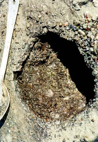 Core hole showing stripping at the bottom.