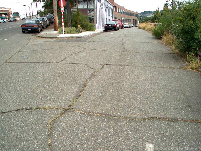 Joint reflective cracking on a low-use industrial road.