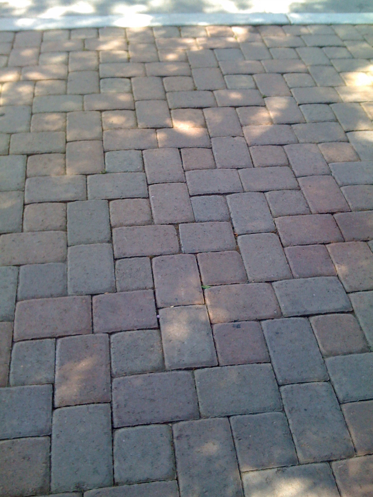 Permeable concrete pavers are simple to install and drain well.