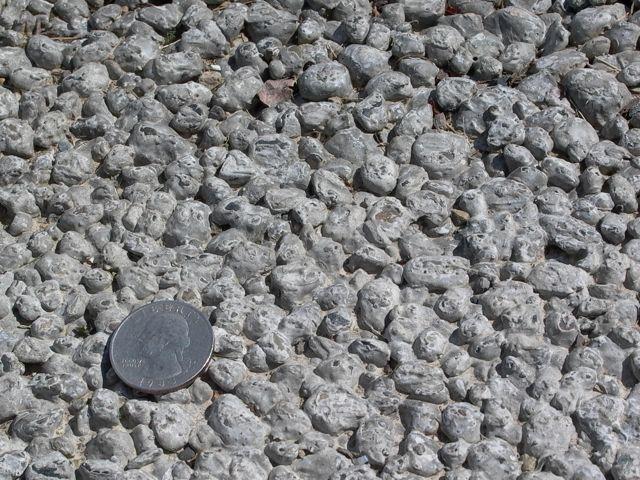 Porous concrete. Note the rough texture.